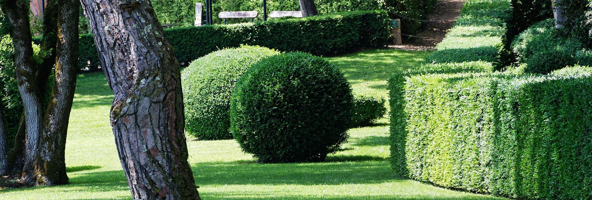 Jardin Passion à Quéven, entretien de jardin, espaces verts Morbihan ...